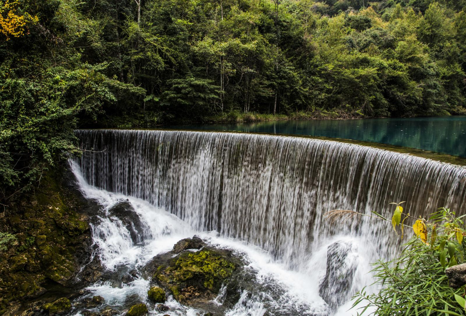 树林沿河风景图片