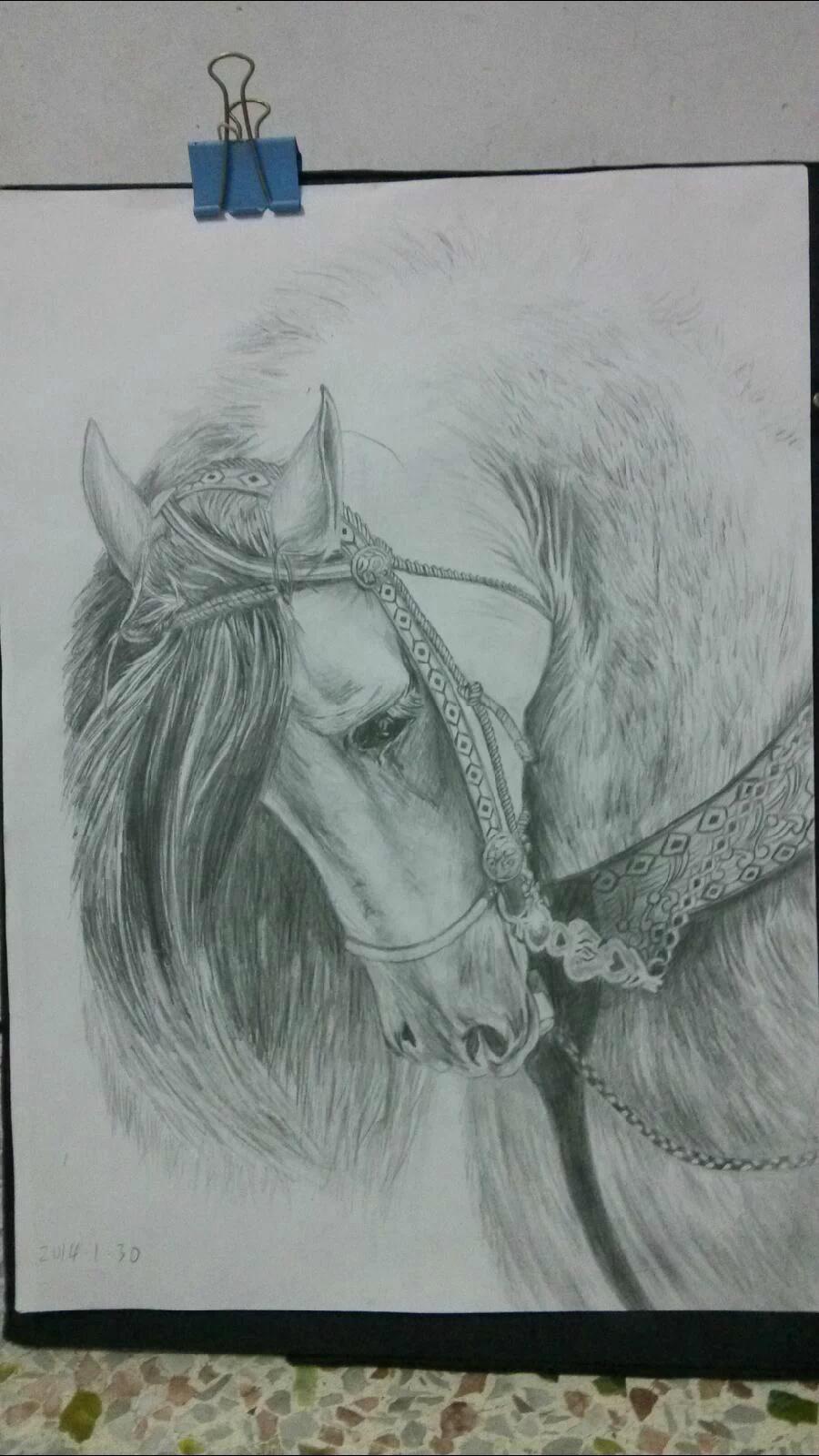 圆珠笔画,青青的草原上,望不到边际,远处的天空里白云朵朵,一匹棕色马