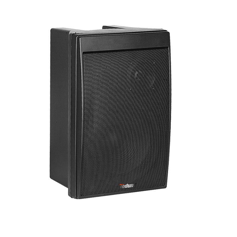 8寸会议音箱 TD811 语音音箱 宴会厅音响 音箱 8寸2分频 可壁挂 塑料材质结构