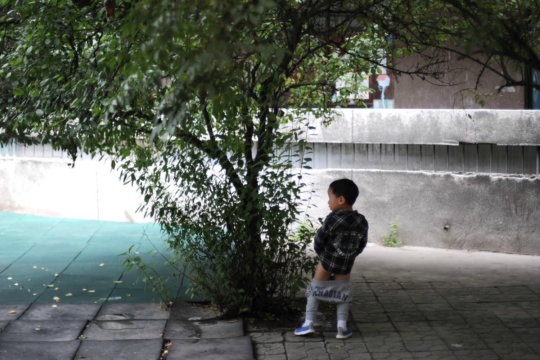宝宝第一天上幼儿园的照片