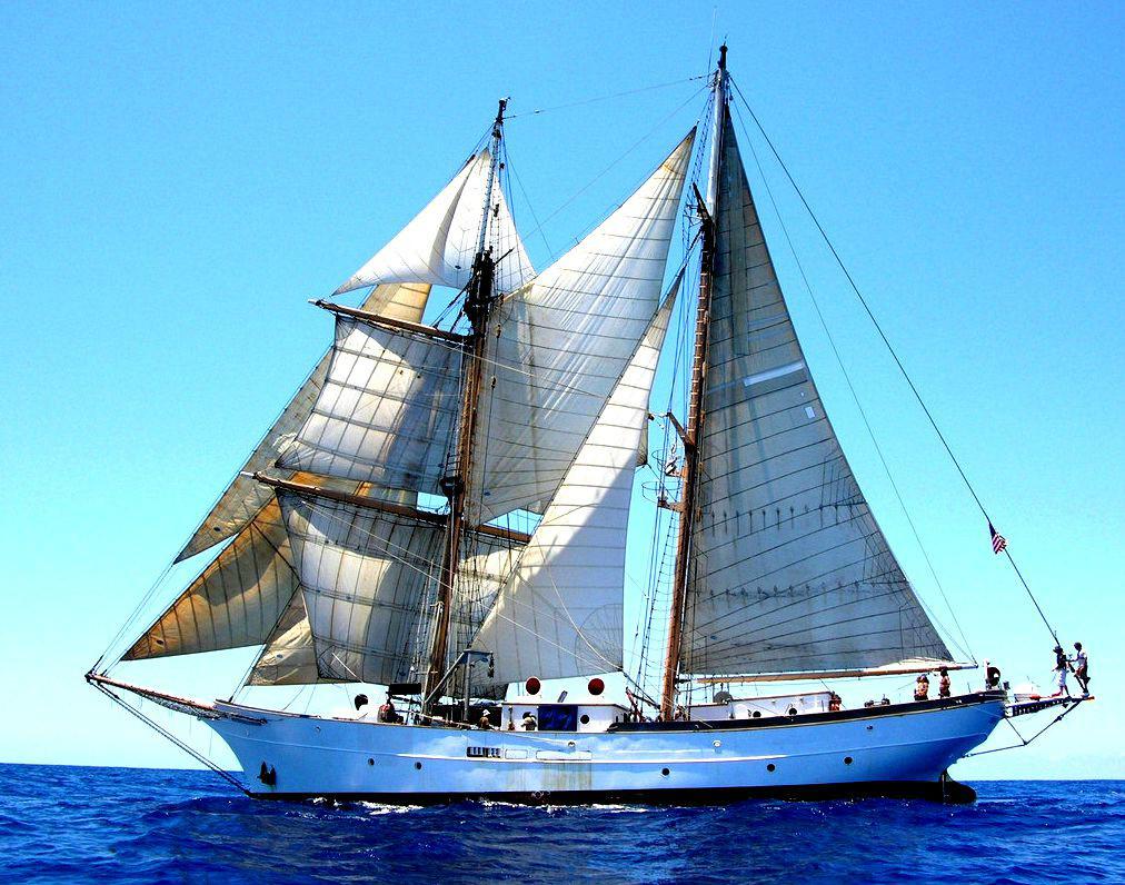 帆船正视图素材