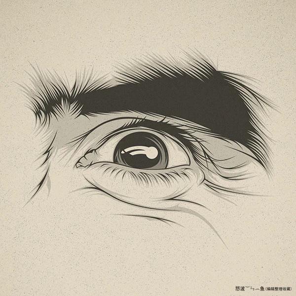 插画风格 眼睛的画法