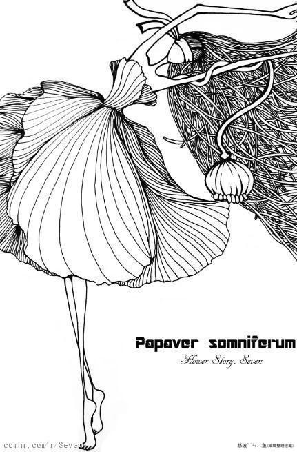 黑白线描插画欣赏_猫尛鱼