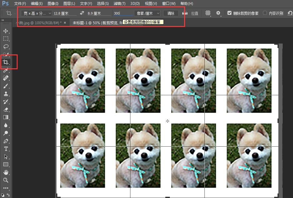 【ps教程】新手学习:5寸相纸上,用ps快速排版8张一寸证件照