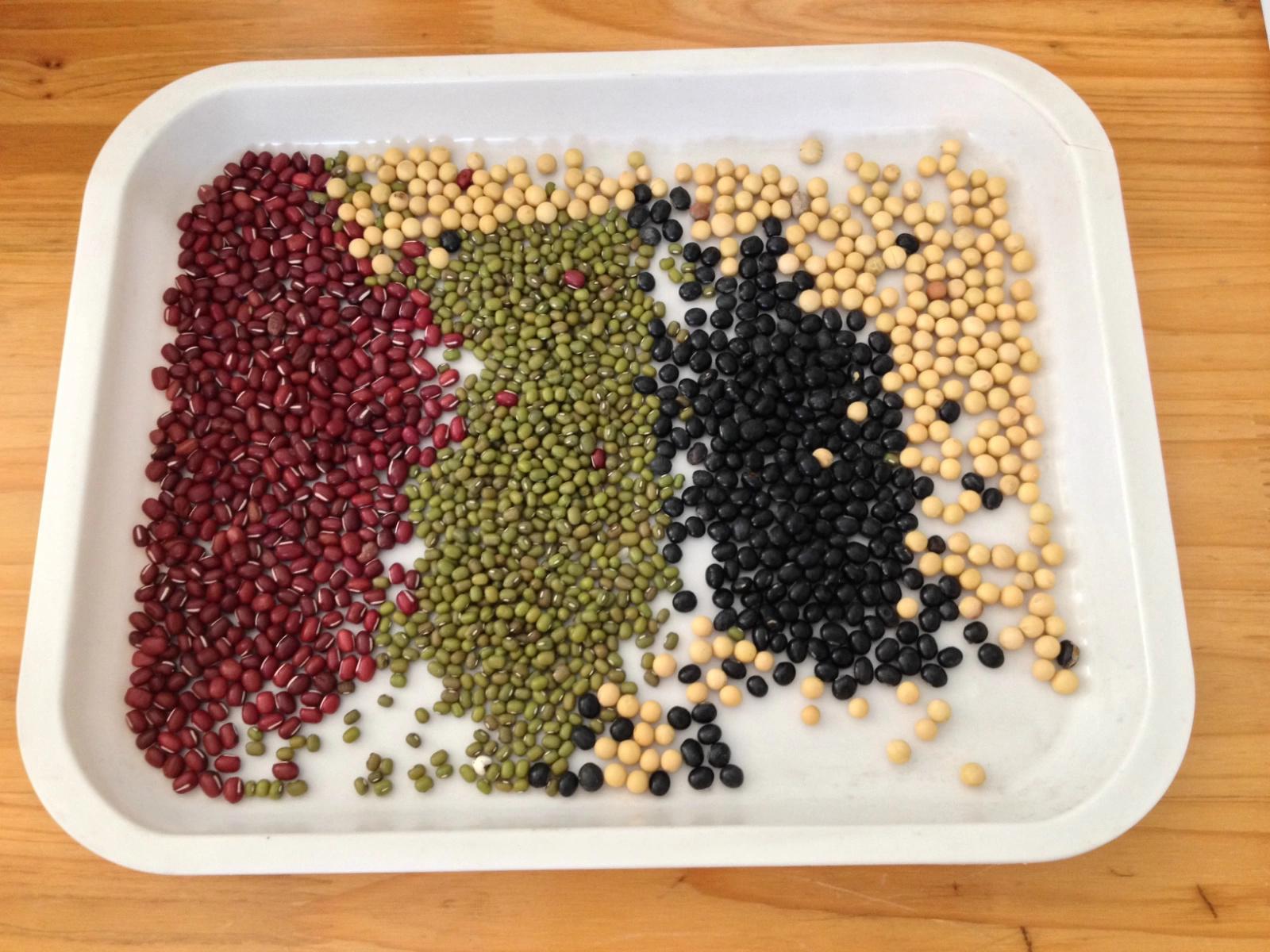 豆子儿童手工制作图片