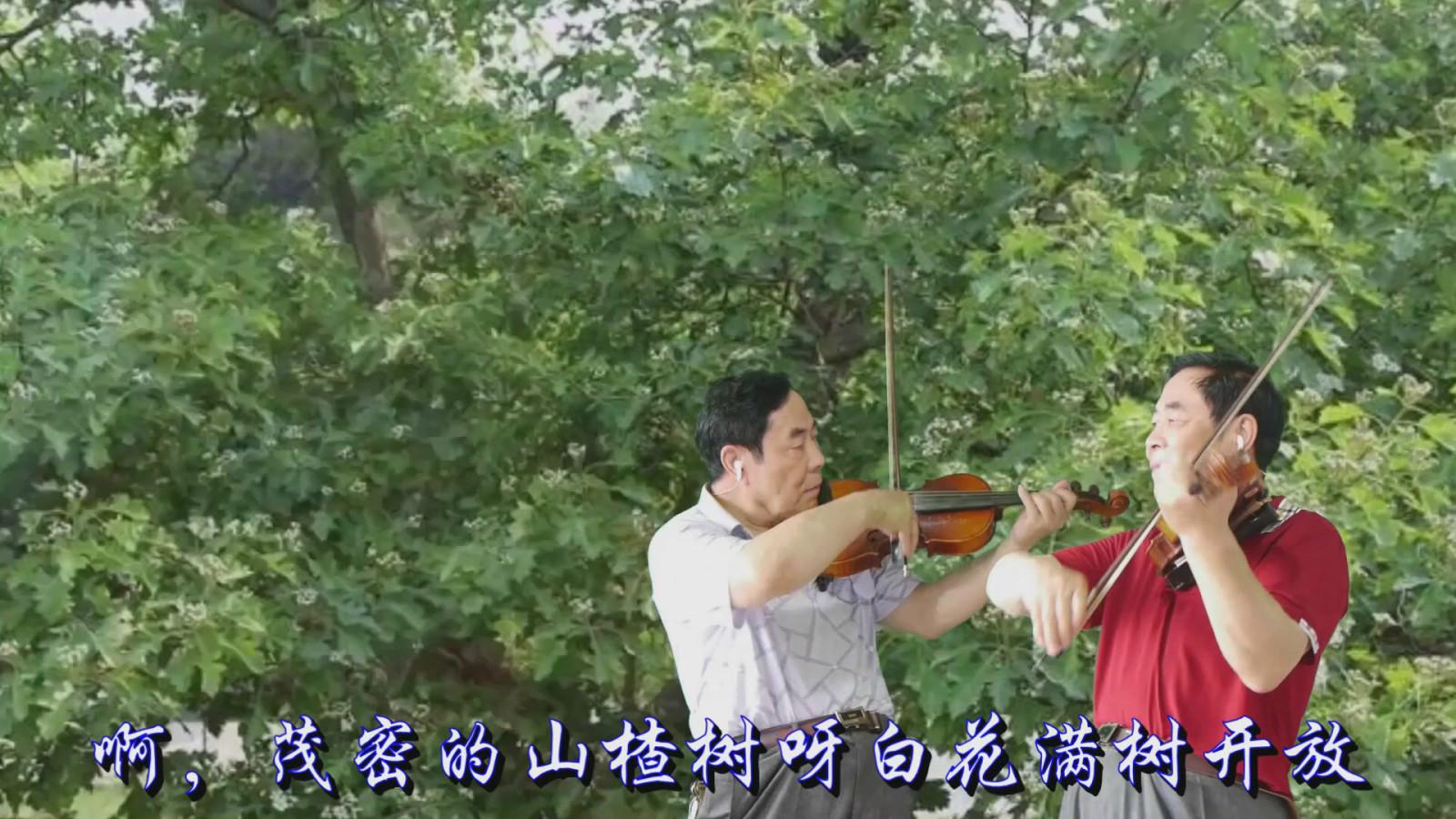 小提琴二重奏--苏联歌曲《山楂树》
