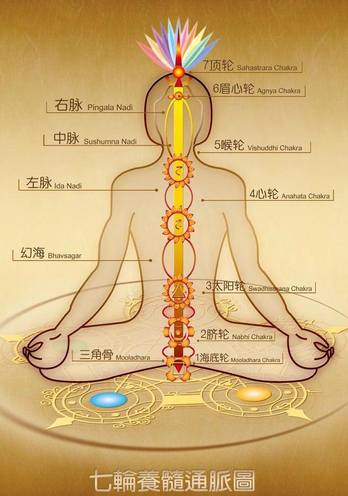 何静春 生命能量提升中级班 静坐冥想 内观修炼