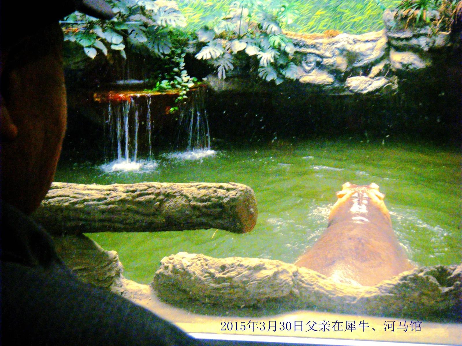(原创)我陪老父逛北京动物园-乐龄游老年旅游网