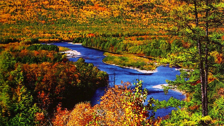 走过花季雨季,在冰雪季到来之前,大峡谷地区披上了秋日大氅,盛装出席,集柔美华美壮美于一身,呈现稀世之美。一向被云雾闭锁的南迦巴瓦峰终于展露了真容,积雪的锥体峰巅凸现于晴空背景中,是那样纯正的白与蓝;而每当秋阳的夕晖为之镀上玄幻的光晕,又仿佛秉有了金属质地。山脚下有雅鲁藏布江绕越,历经整个夏季的浊流滔滔,此刻清澈,或绿或蓝,听凭了光色的映照。被清澈的还有能见度,让你远达视力极限纬度、高度、温度、湿度共同作用,造就了大峡谷地区植被序列的垂直分布;来自印度洋的水汽常川不息,又为造化之物平添了饱满温润的特质。