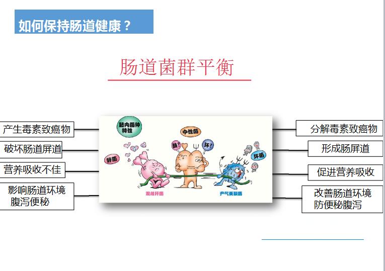 益菌科技结构图片