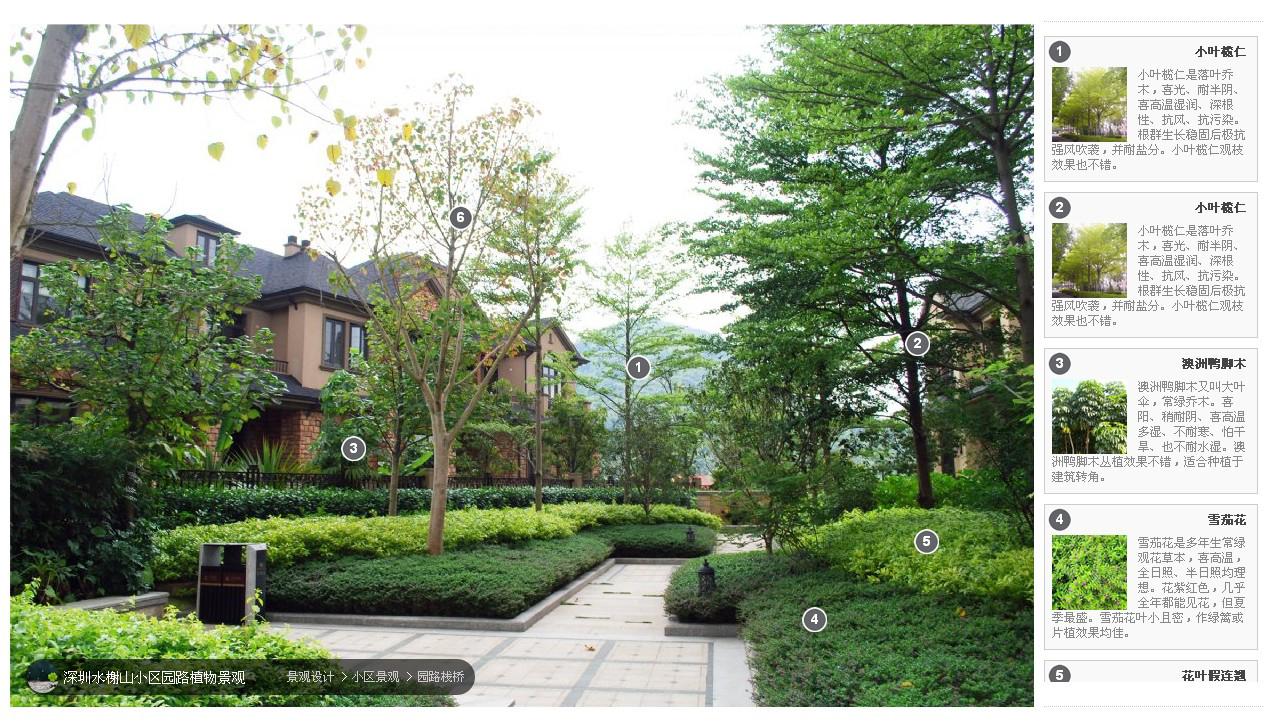 景观植物造景精品案例(转)