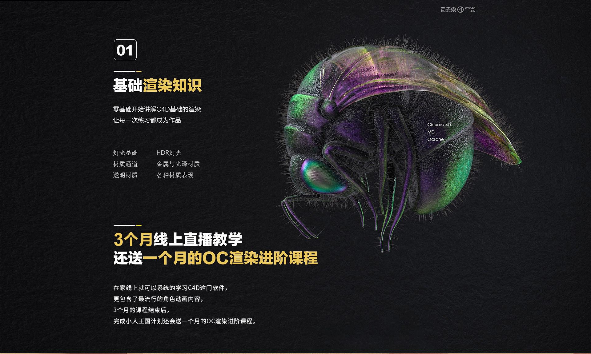 2020精英班课程大纲(适配版)_02.jpg