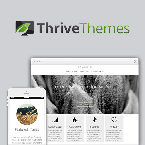 wordpress主题-Thrive Themes Minus WordPress Theme 2.0.2