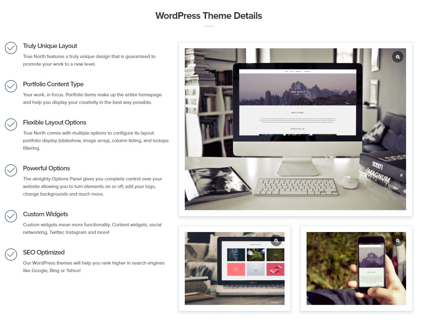 wordpress主题-CSSIgniter True North WordPress Theme 1.3
