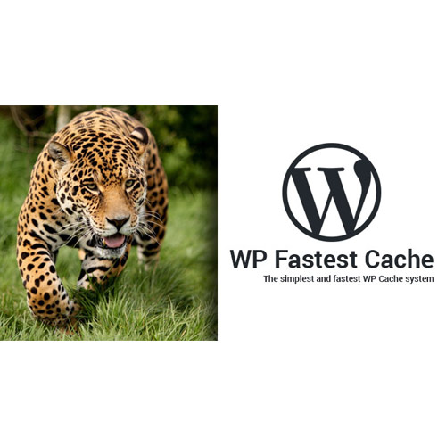 wordpress插件-WP Fastest Cache WordPress Plugin – Premium 1.6