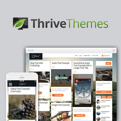 wordpress主题-Thrive Themes Storied WordPress Theme 2.0.2